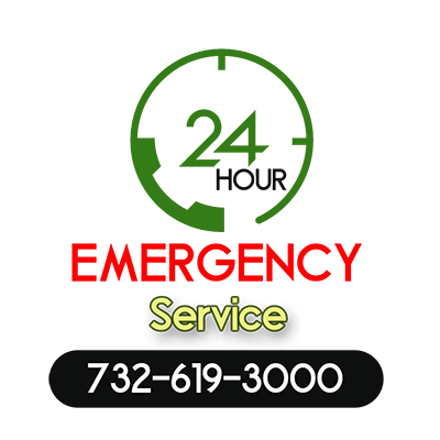 24 hours Service for a Tree Service